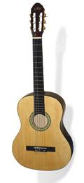 Гитара Rio RGC-2-N2